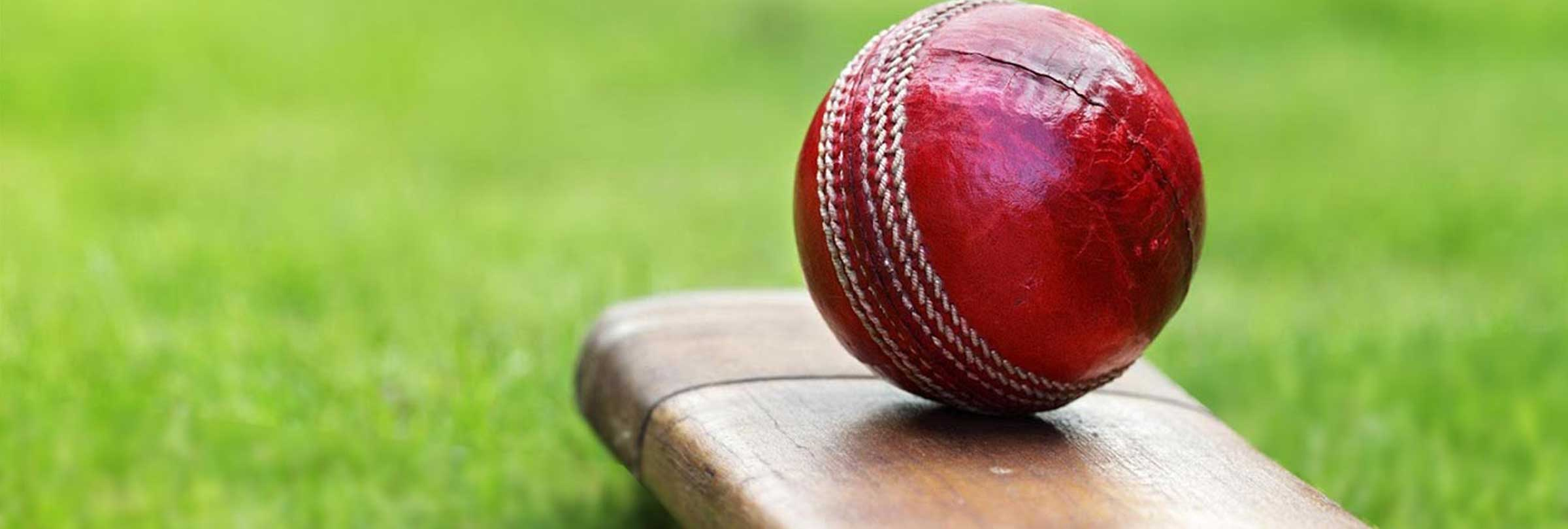 Cricket Ball and Bat on Synthetic Cricket Pitch